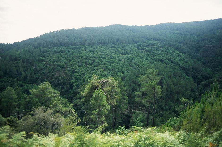 Sentiers - Terrain municipal de Lamelouze